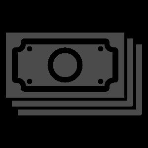 money icon tampa FL